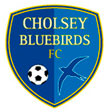 Cholsey Bluebirds FC