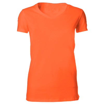 Orange Pudmoor House PE t-shirt